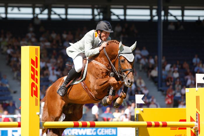 international horse breeders breeding