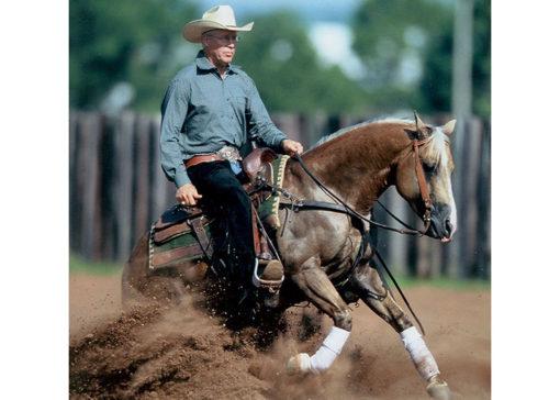 Matt Dillon Dun It quarter horse stallion