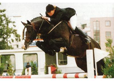 farmer stallion