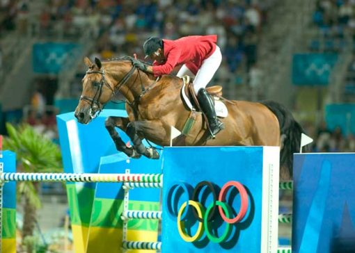 Epsom Gesmeray stallion