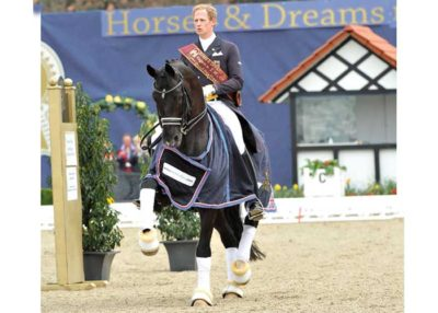 Totilas warmblood stallion